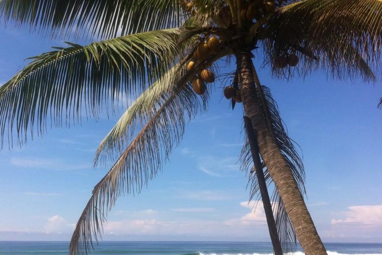 pulau sipadan malesia