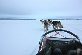 aktiiviloma Pohjois-Karjalassa